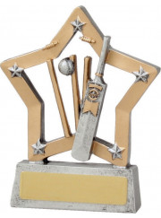 12940 Cricket Trophy 13cm