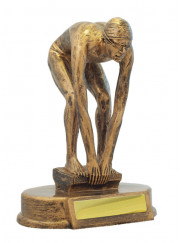 590-2M Male Swimming Trophy 12.5cm